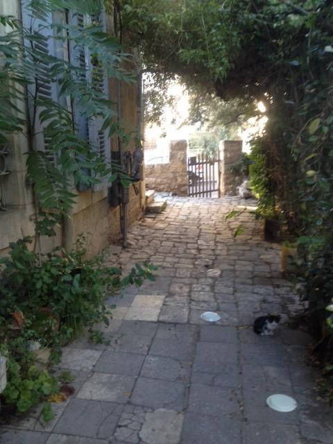 Jerusalem Property Sales